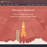 100MBPS Seedbox