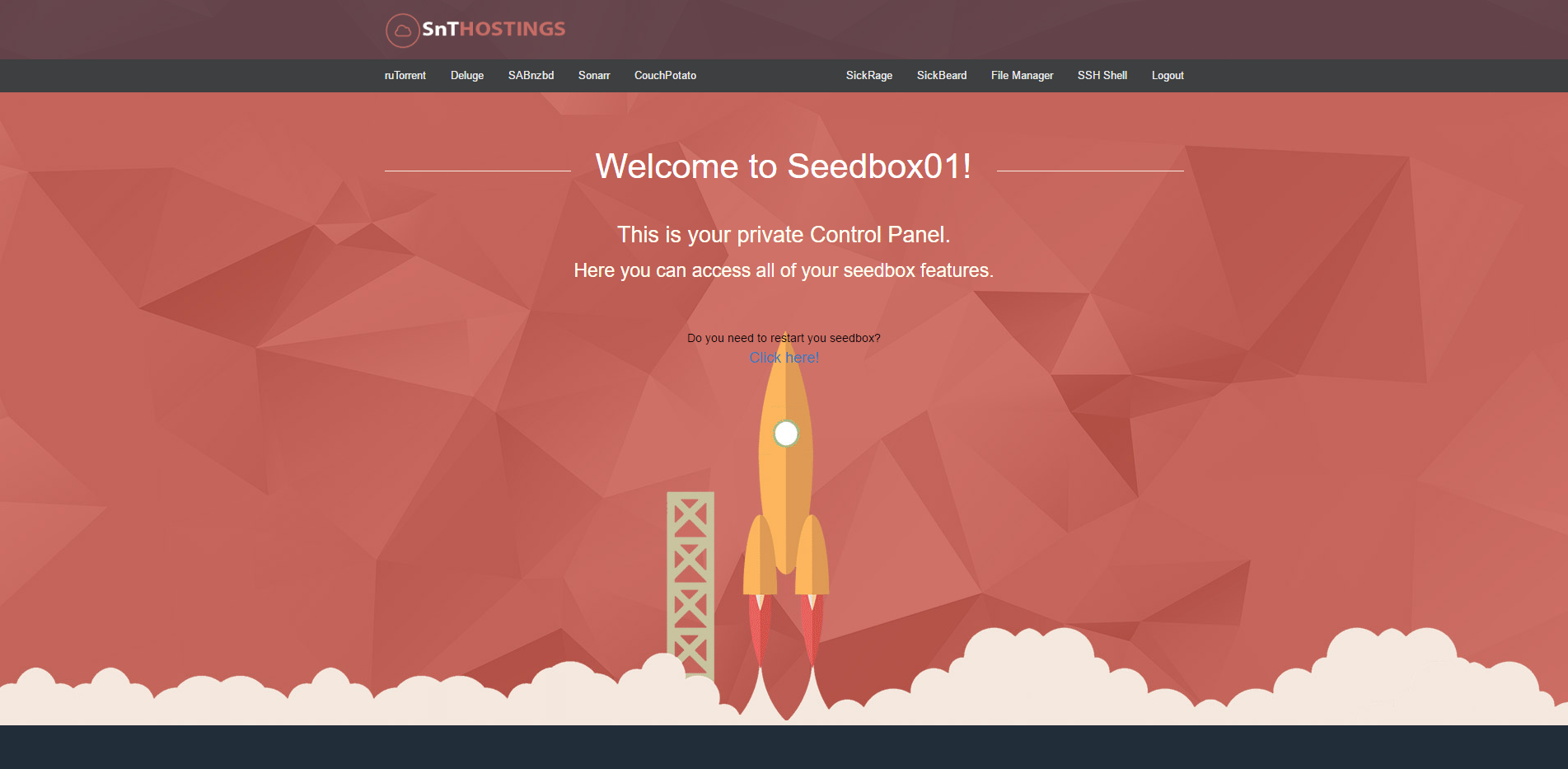 After Login Page for our 100MBPS Seedbox